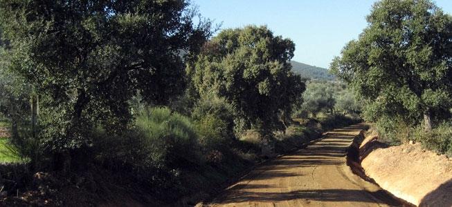 Desarrollo rural, agrícola y social